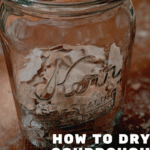 How to Dry (and Revive) your Sourdough Starter for Long-Term Storage