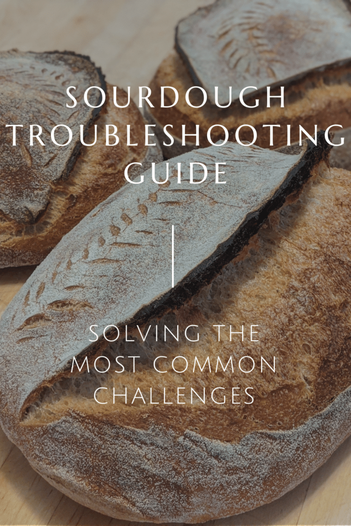 Sourdough Bread Problems: Troubleshooting Common Challenges