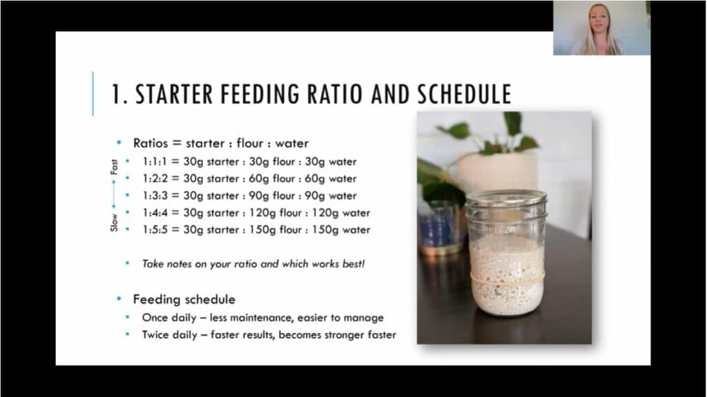 Sourdough feeding ratios, troubleshooting, and scheduling